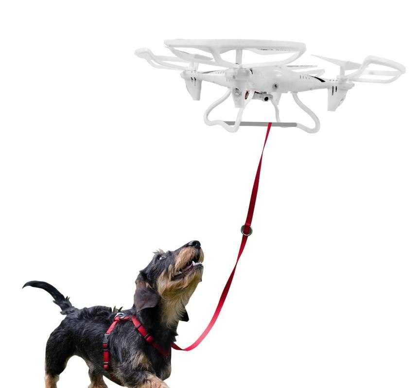 Drone criado para passeio com cães