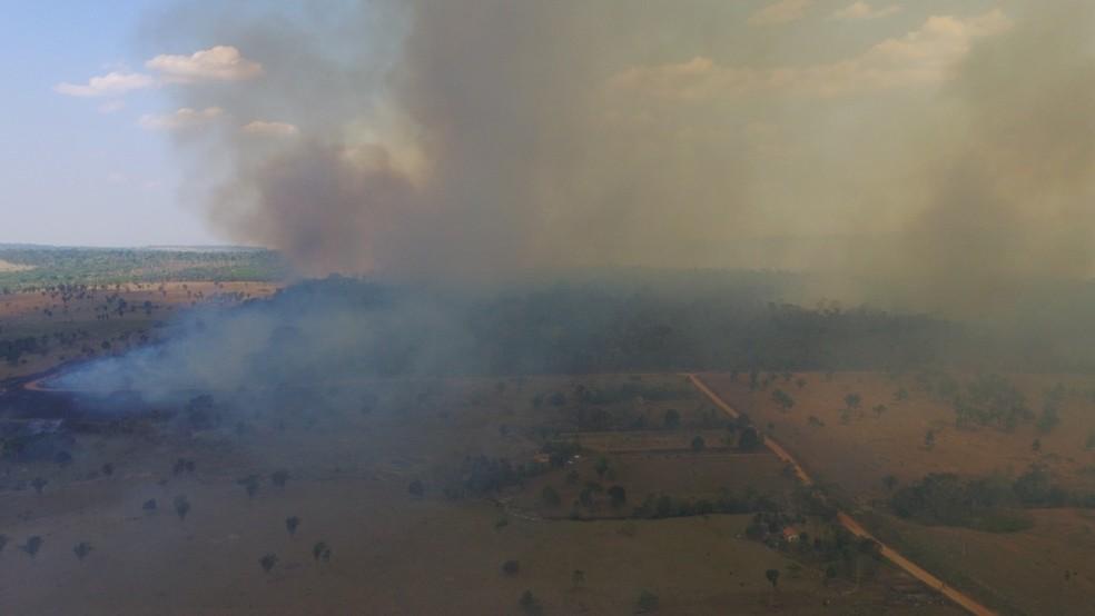 Propriedades rurais e área de preservação ambiental foram atingidas em Nova União (Foto: Gedeon Miranda/ G1)