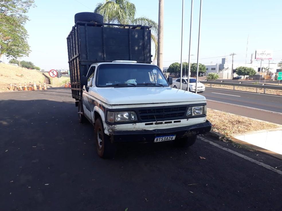 Cabeças de gado estavam sendo transportadas em caminhonete em Votuporanga  — Foto: Arquivo pessoal