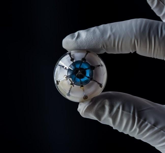 Olho biônico é um protótipo inédito produzido na Universidade de Minnesota, nos EUA (Foto: University of Minnesota, McAlpine Group)