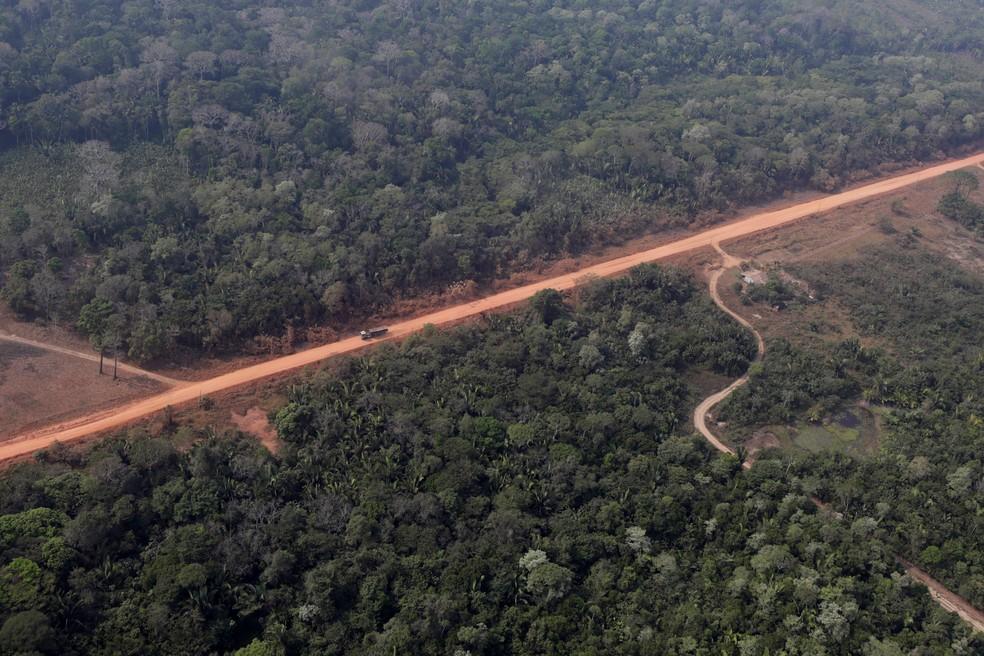 Vista aérea da BR-319 perto de Humaitá. — Foto: Ueslei Marcelino/Reuters