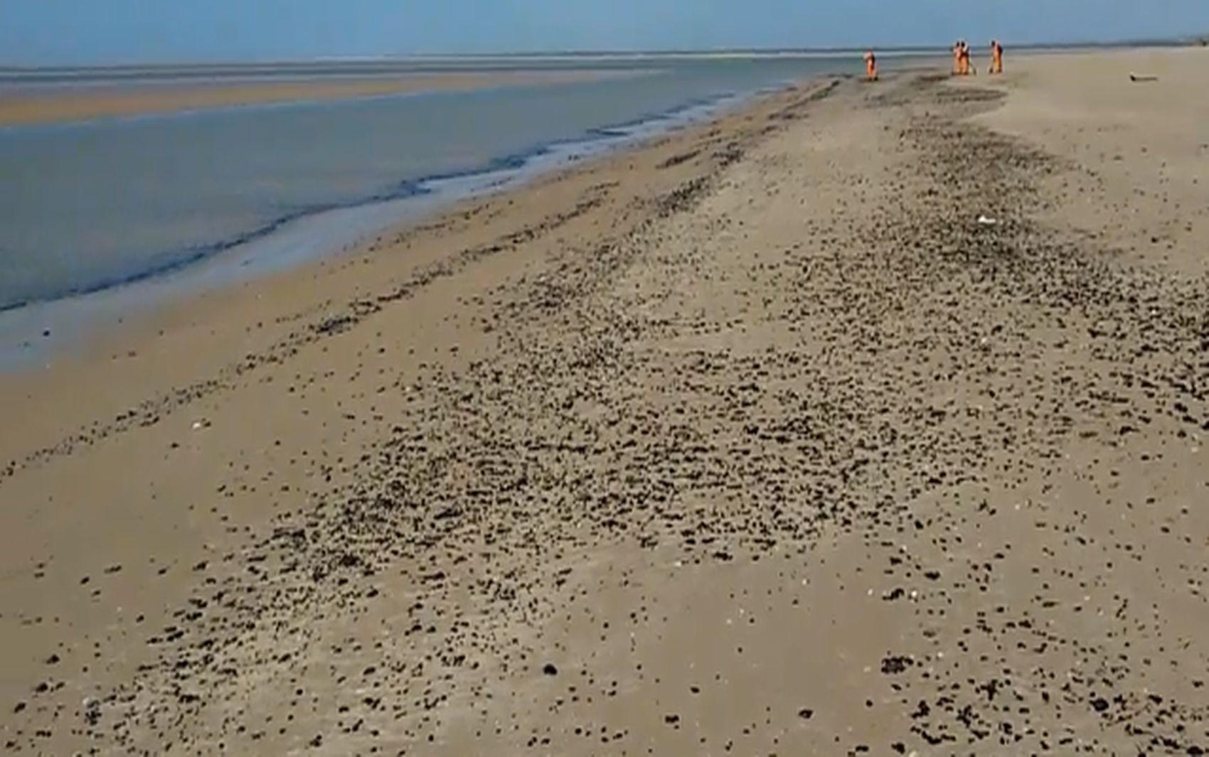 Mais manchas de óleo são registradas pela Adema em praias de Aracaju