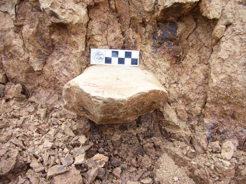 Local onde foram encontradas as ferramentas de milhões de anos (Foto:  PROF. ZHAOYU ZHU)