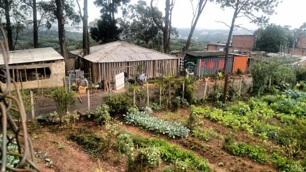 Moradores transformam favela precária em vila sustentável (Foto: Divulgação)