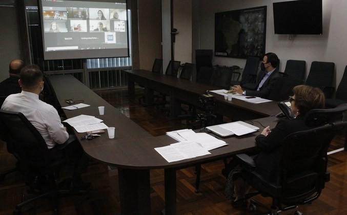 Ministra Tereza Cristina em encontro virtual sobre títulos verdes (Foto: Antônio Araújo/Mapa/Divulgação)