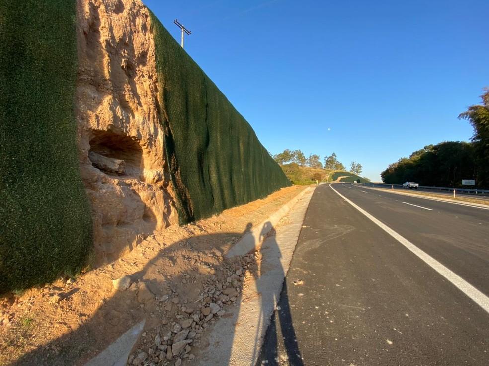 Em maio deste ano, localização de um fêmur de dinossauro chegou a paralisar as obras na SP-333, entre Marília e Júlio Mesquita — Foto: Fernanda Marion/ TV TEM