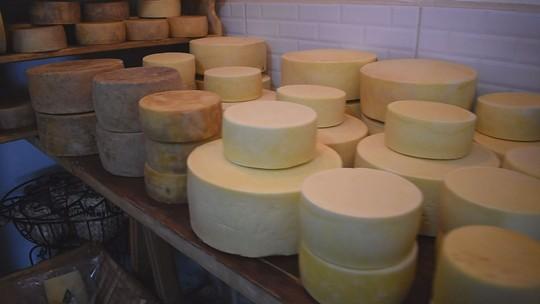 Alagoa se moderniza em busca de reconhecimento oficial como região produtora de queijo