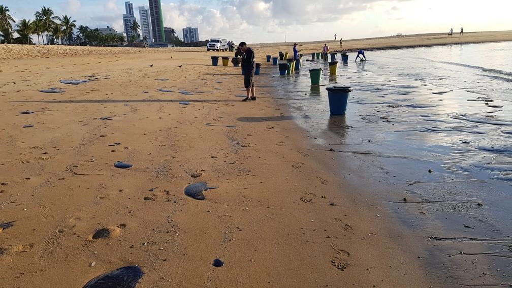 Óleo chegou a Praia de Barra de Jangada, no Jaboatão dos Guararapes, no Grande Recife, nesta quarta-feira (23) — Foto: Reprodução/WhatsApp