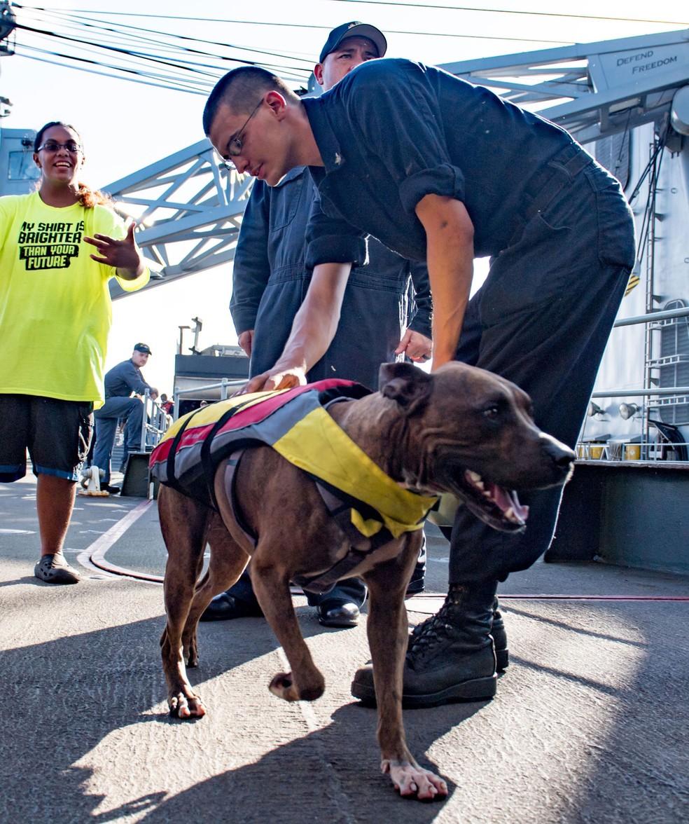 Foto divulgada pela marinha mostra Tasha Fuiab e seu cão durante resgate em 25 de outubro, no Oceano Pacífico  (Foto: Jonathan Clay/US Navy/AFP)