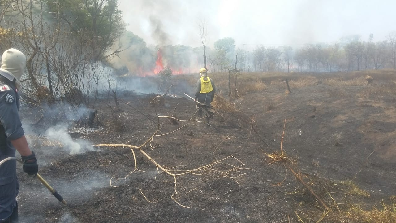Incêndio atinge Mata do Noé em Divinópolis e consome o equivalente a oito campos de futebol - Notícias - Plantão Diário