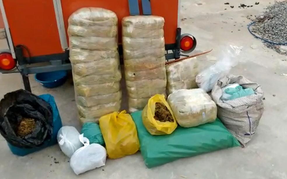 Drogas foram apreendidas com um dos alvos da Operação Cerca Trova 2, em Paulista, no Grande Recife — Foto: Polícia Civil/Divulgação