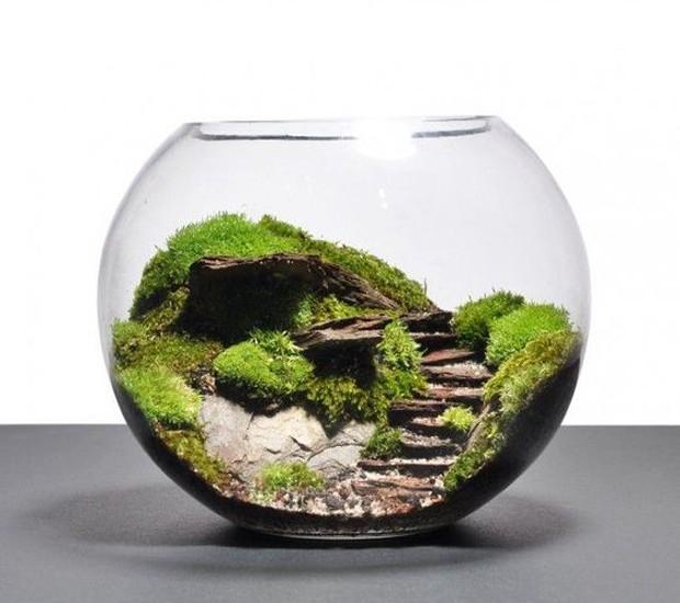 9-ideias-de-decoracao-com-plantas-para-o-dia-as-maes-terrario.jpg (Foto: Pinterest/Reprodução)