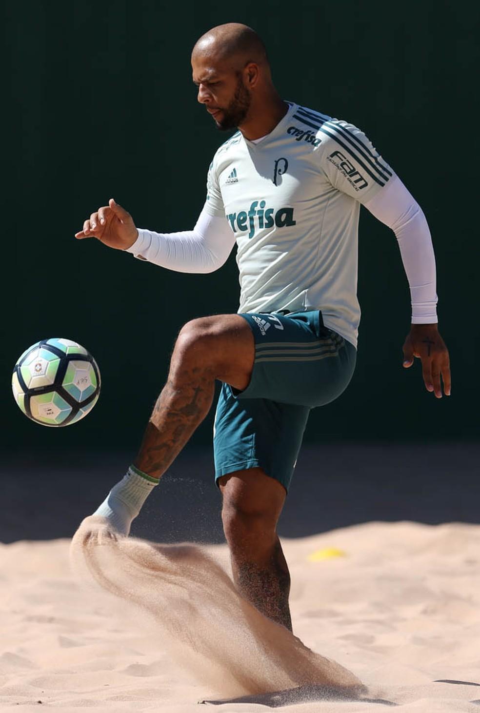 Felipe Melo fez apenas treinos físicos desde sua reeintegração (Foto: Cesar Greco/Ag Palmeiras)