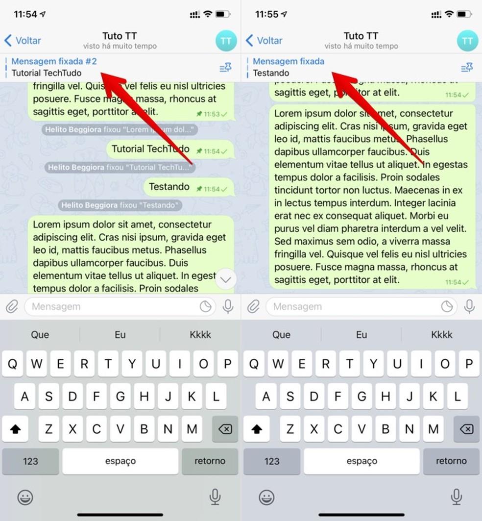 Visualizando mensagens fixadas — Foto: Reprodução/Helito Beggiora