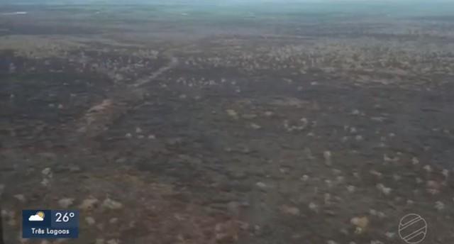 Queimada no Pantanal de MS termina com chuva e trabalho que envolveu quase 300 combatentes