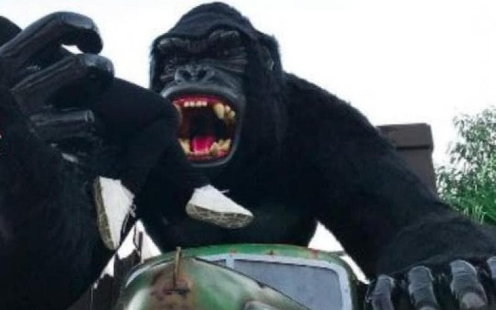 Estátua de gorila de onde o menino caiu no sábado, em foto não datada — Foto: Reprodução NSC