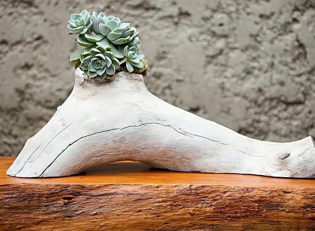 O paisagista Edu Bianco, da Flamboyant Paisagismo, plantou uma muda de echeveria na escultura feita com um pedaço de tronco de grápia pela designer Monica Cintra (Foto: Edu Castello/ Editora Globo)