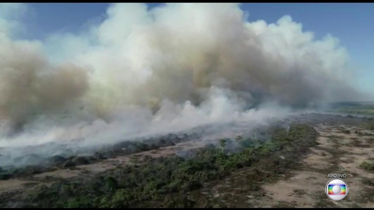 Discurso de Bolsonaro na ONU provoca reações entre políticos e ambientalistas