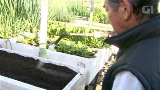 Meu Jardim: aprenda a fazer horta em caixas de isopor; VÍDEO