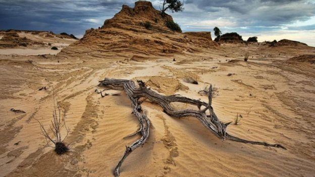 Boa parte das regiões australianas de New South Wales e Queensland estão áridas hoje (Foto: Getty Images)