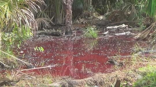 Populares tentam invadir área onde ocorreu vazamento de óleo no AM
