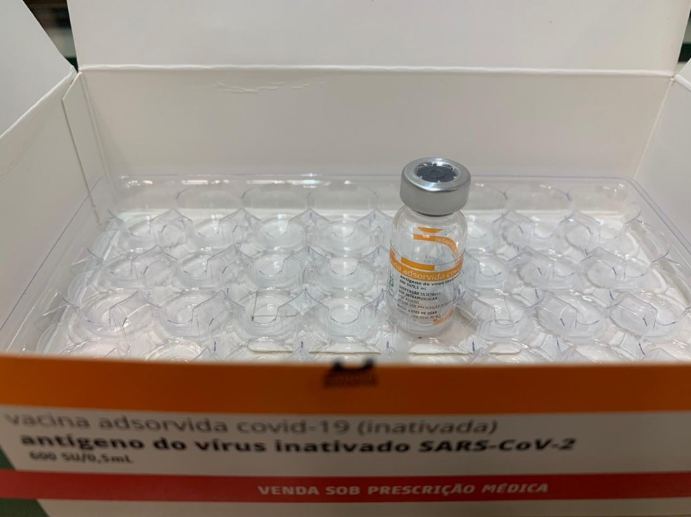 Vacina CoronaVac — Foto: Lafaete Vaz/G1