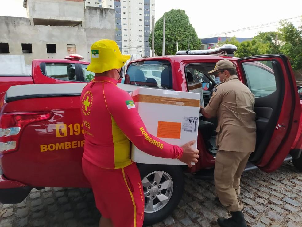 Governo do RN inicia distribuição de vacinas contra a Covid para municípios  do interior e Grande Natal   Rio Grande do Norte   G1