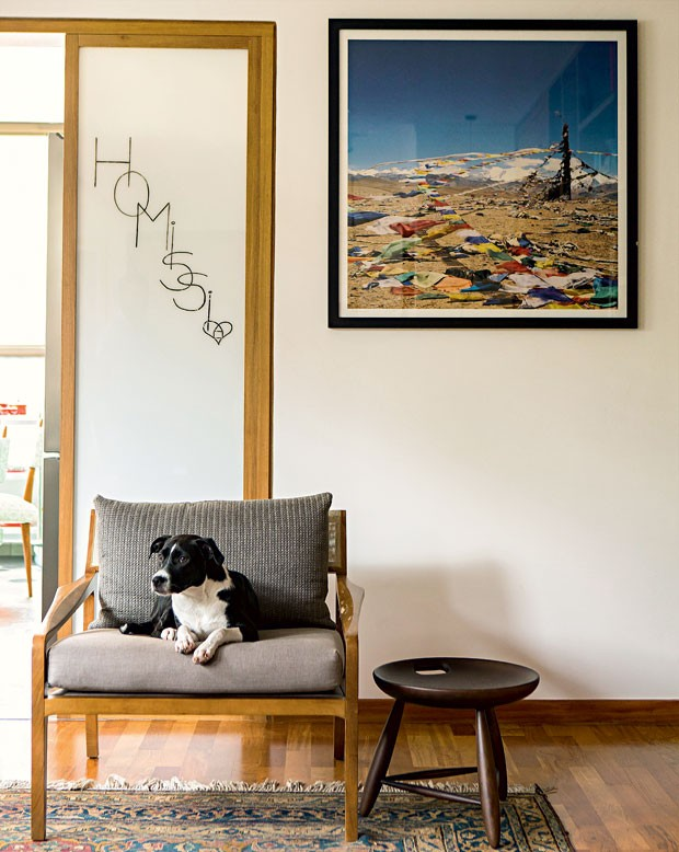 apartamento-dt-estudio-canto-de-leitura-poltrona-cachorro-fotografia (Foto: Edu Castello/Editora Globo)