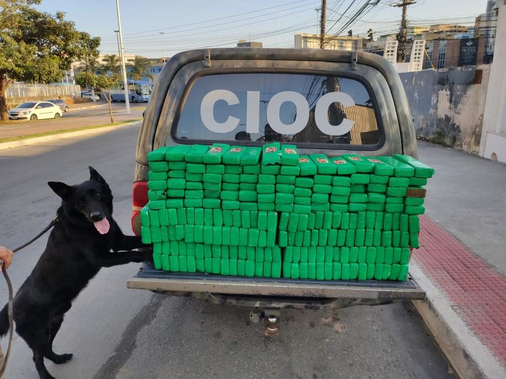 PM apreendeu 155 kg de maconha em Viana, ES — Foto: Divulgação/PM