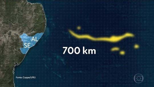 Estudo da UFRJ aponta origem do óleo a 700 km da costa