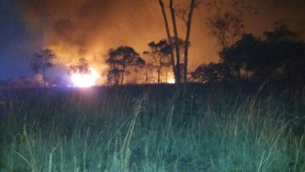 Aproximadamente 800 hectares foram atingidos, de acordo com os bombeiros (Foto: Corpo de Bombeiros/Divulgação)