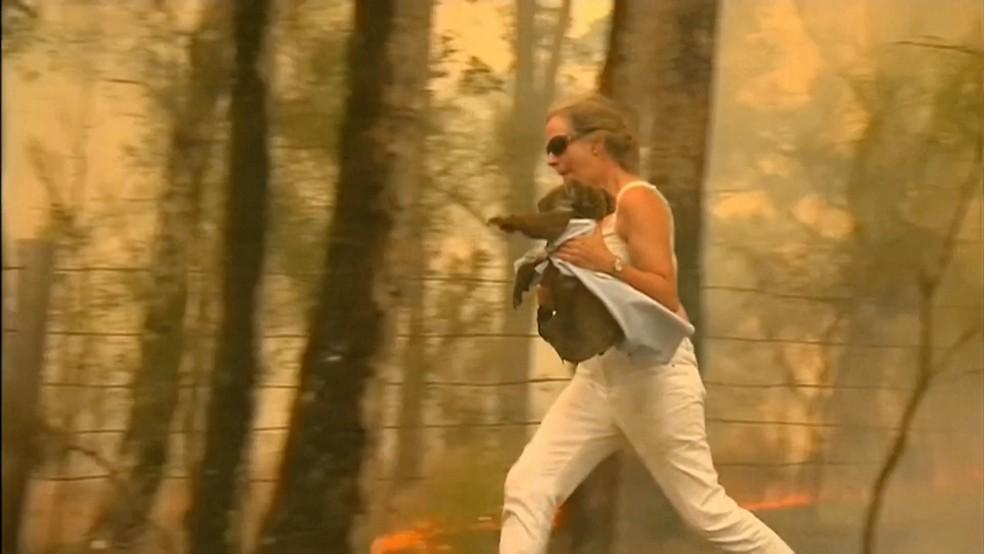 Mulher carrega coala de região atingida por incêndio na Austrália  — Foto: Reprodução/BBC