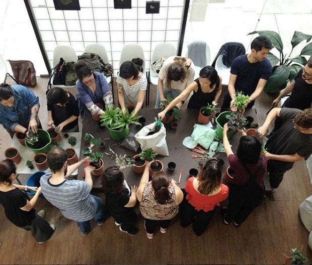 escoladebotanica-instagram (Foto: Reprodução/ Instagram)