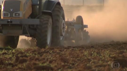 Plantio da soja está atrasado em Mato Grosso do Sul e Goiás