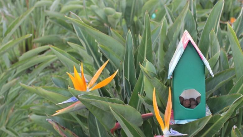 casa-passaro-passarinho-papelao-tutorial-papelão-pássaro (Foto: Vitor Antonio Bernardes Gomes/Ed. Globo)