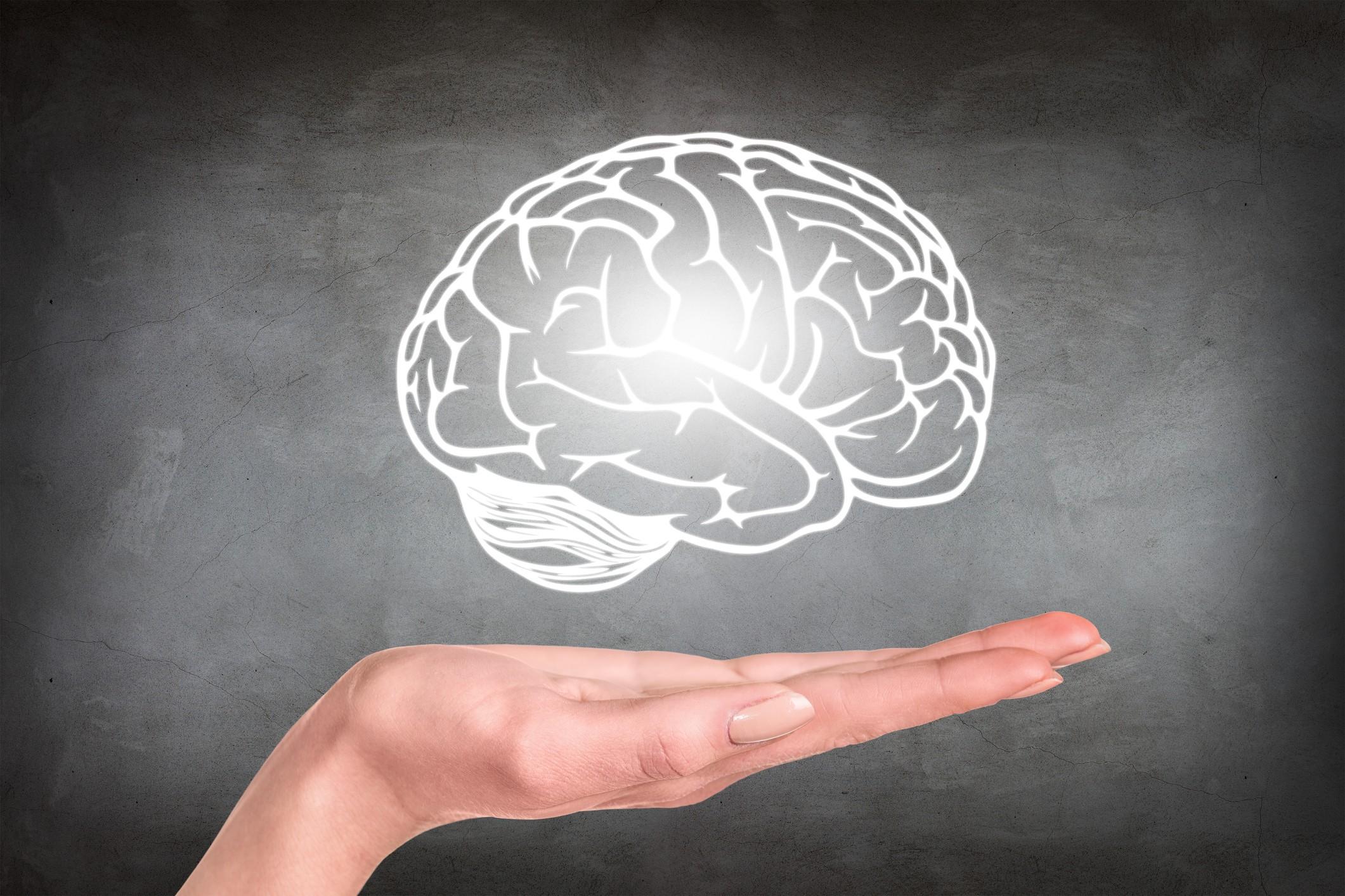 cérebro, neurociência (Foto: Thinkstock)