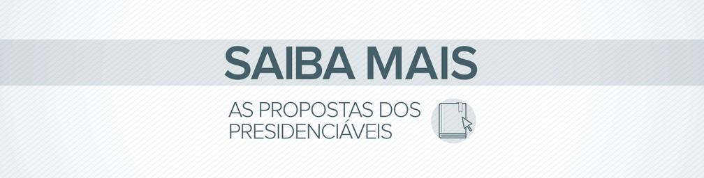 Saiba mais sobre as propostas de Bolsonaro e Haddad para o ensino a distância — Foto: Alexandre Mauro / G1