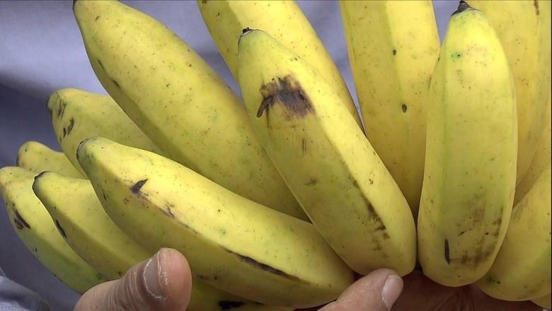banana-casca (Foto: Reprodução/TV Globo)