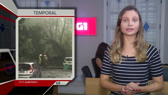 Destaque da noite: G1 acompanha resgate de três pessoas que estavam em carros atingidos por árvore e fios elétricos em Petrópolis