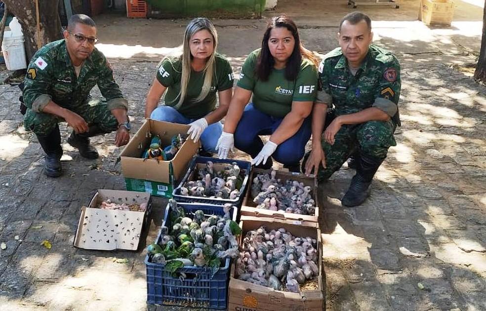 Sargento Ivo Gonçalves e Cabo Rafael Cardoso levaram aves para o Cetas — Foto: Polícia Militar/Divulgação