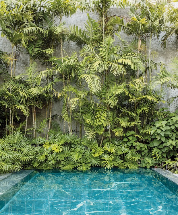A piscina é cercada por plantas e árvores (Foto: Stephan Ruiz/ Reprodução)