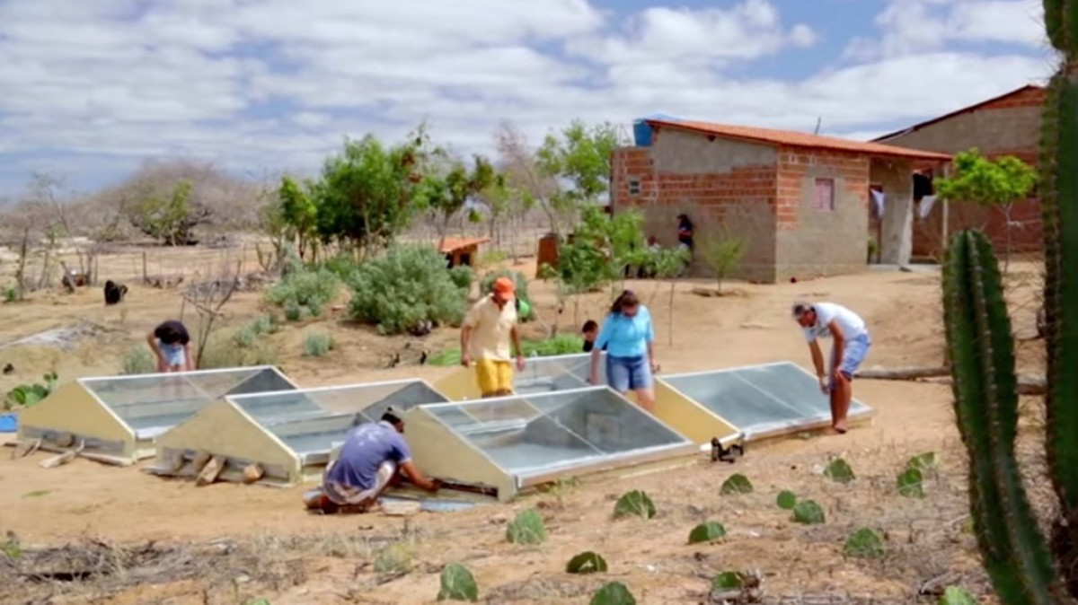 Dessalinizador que usa energia solar torna 16 litros de água salobra em potável e ganha prêmio nacional