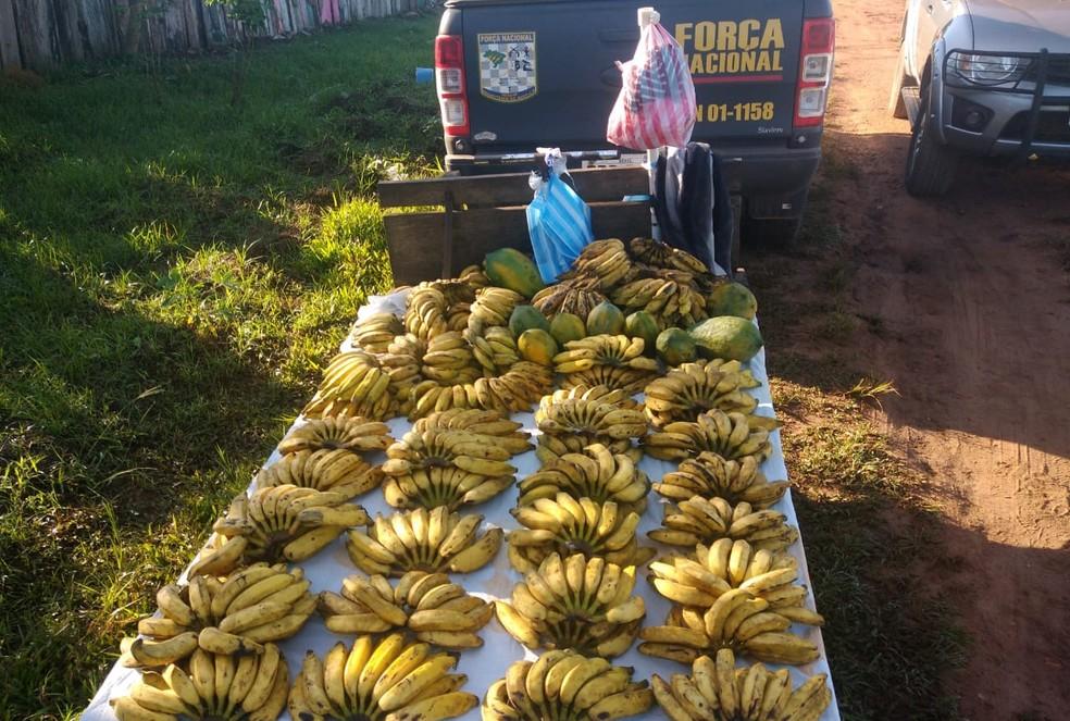 Cerca de 160 quilos de bananas foram apreendidos — Foto: 6º BIS/Divulgação