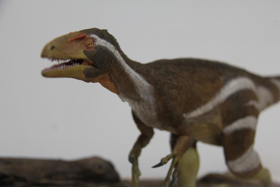 Reprodução do Aratasaurus museunacionali a partir do fóssil descoberto. — Foto: Divulgação
