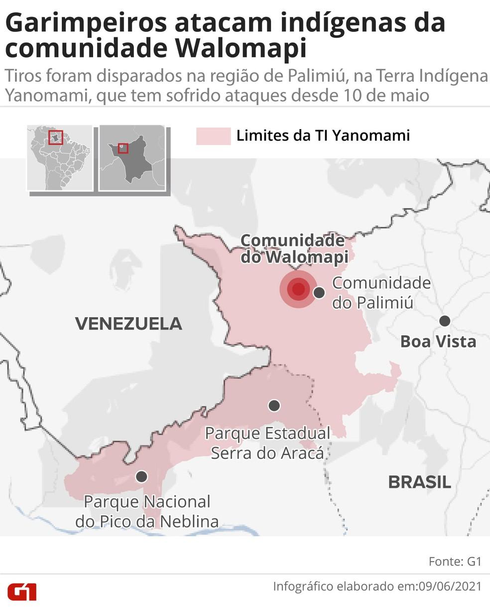 Comunidade Walomapi, fica na região de Palimiú, na Terra Yanomami — Foto: G1