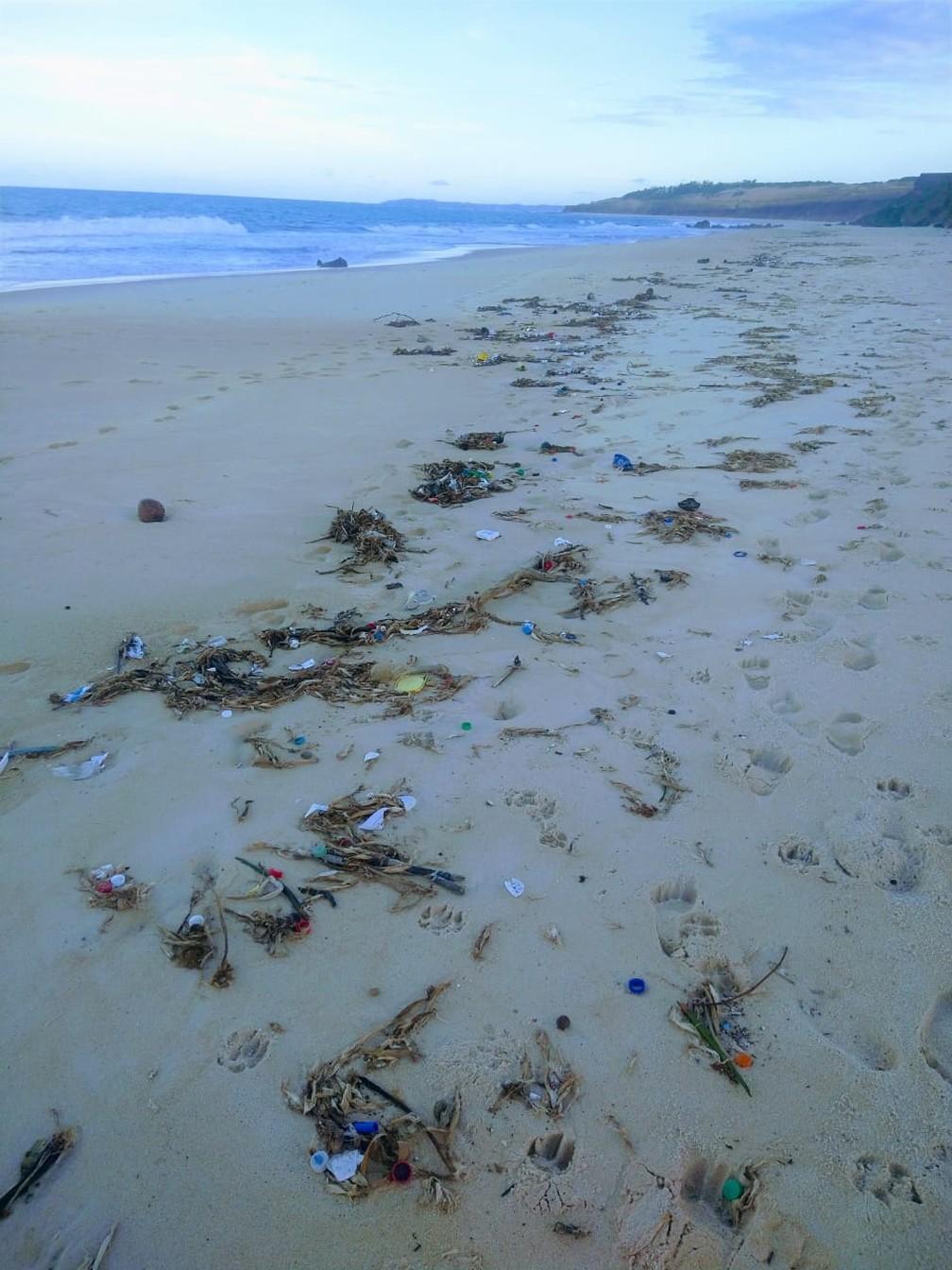 Meia tonelada de lixo é encontrada na praia da Pipa e prefeitura avalia  impacto em área de desova de tartarugas | Rio Grande do Norte | G1