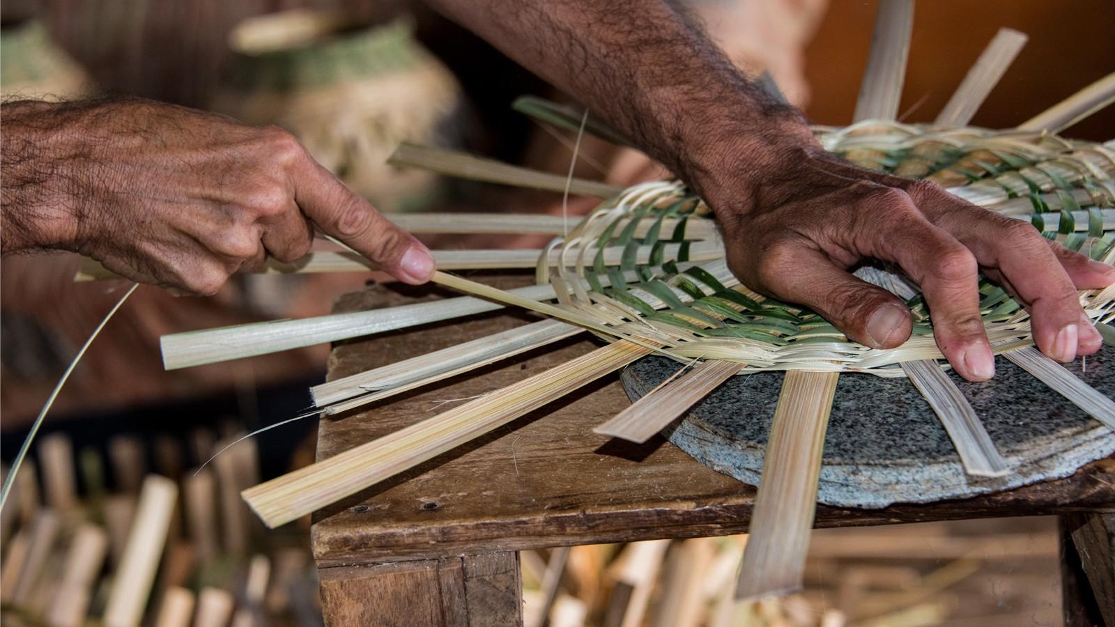 Empresários dos setores de alimentação, artesanato, agências de viagem, hospedagem e guias de pesca podem participar de cursos gratuitos