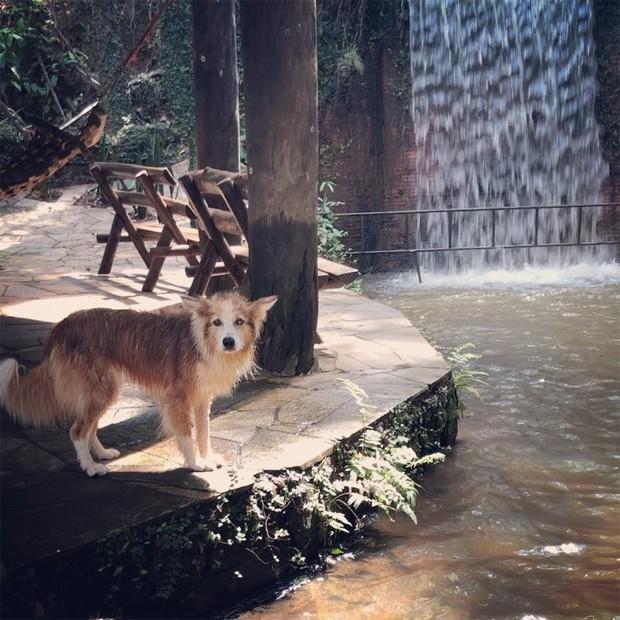 Cachoeira visitada por Luana Piovani (Foto: Reprodução/Instagram)