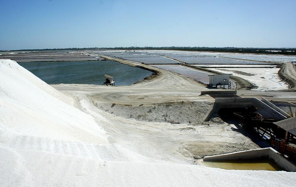 Sal está entre os produtos exportados com maior valor até maio — Foto: Anderson Barbosa/G1