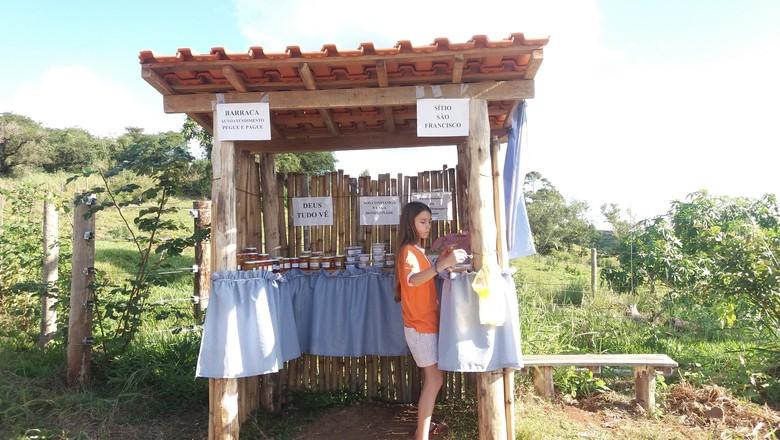 banca-honestidade-pegue-e-pague-parana (Foto: Divulgação)